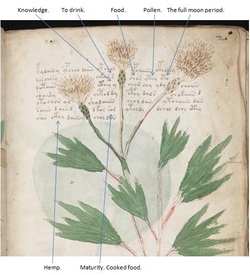 Of The Voynich Manuscript. The most mysterious book can be deciphered. Rg55nSW5nOaqPny15kVCEhX72e7RQbm3Q4cyzVtC4zMpMCrNUprmuuOrcbuzYldcOwt3zU1EkvgBQBsSCaomwvLIcWEWFcEdcstjKtlxFEsSJWZG2CraKGbrX4SREa1FWGj43WVk5QoT8gmI