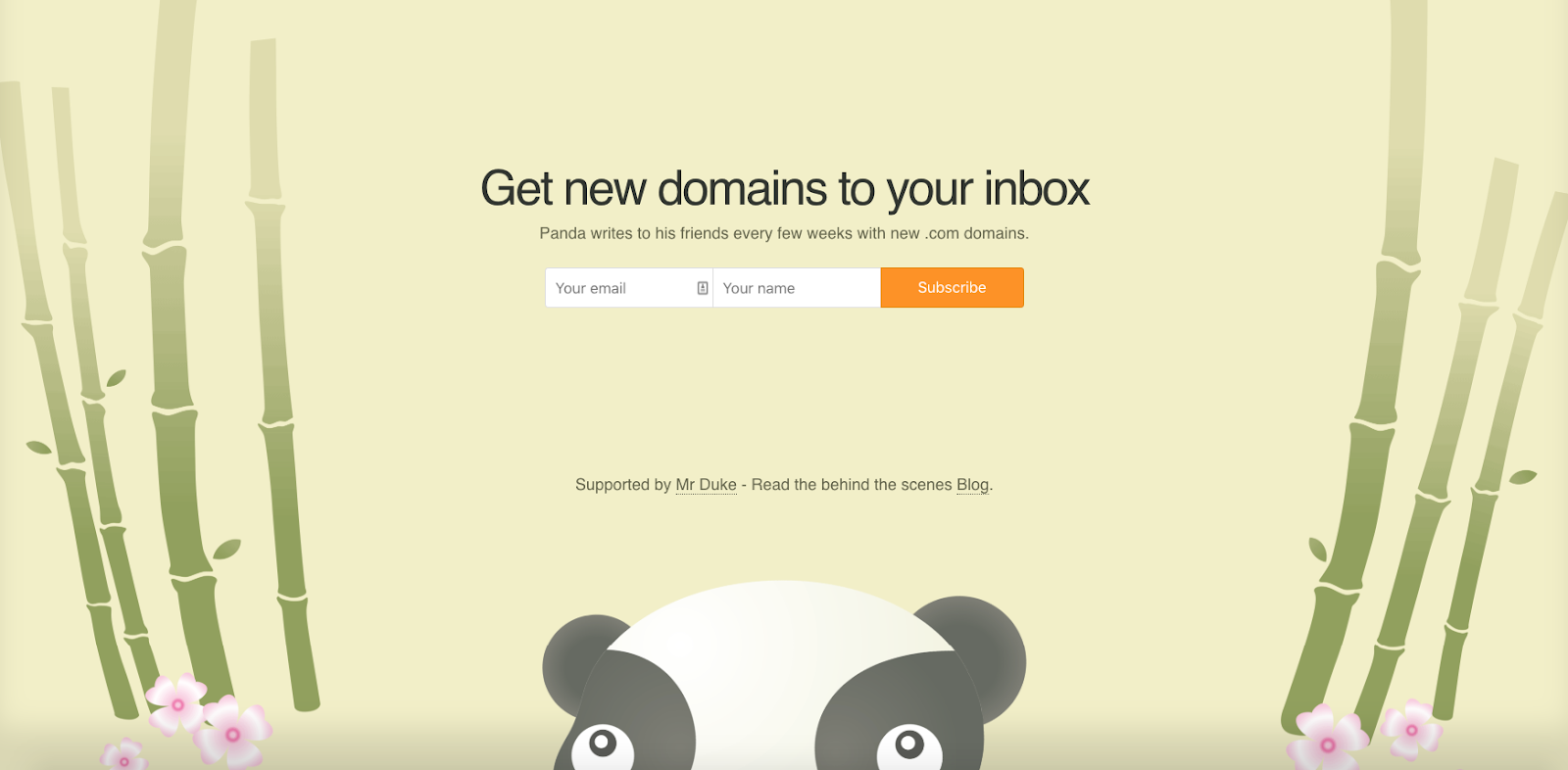 an example of an email subscriber landing page