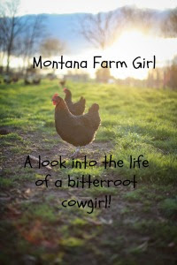 Montana Farm Girl