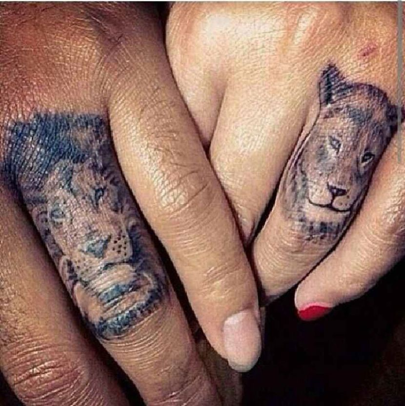 parejas-leones.jpg