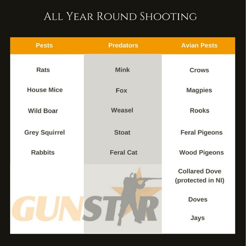All year round shooting species in the UK