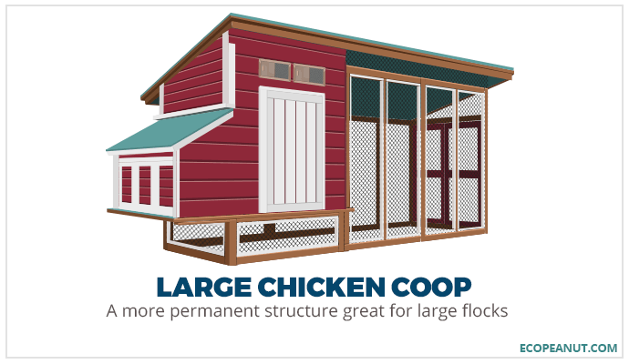 large chicken coop graphic