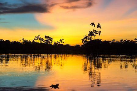 Amazonas-(1).jpeg