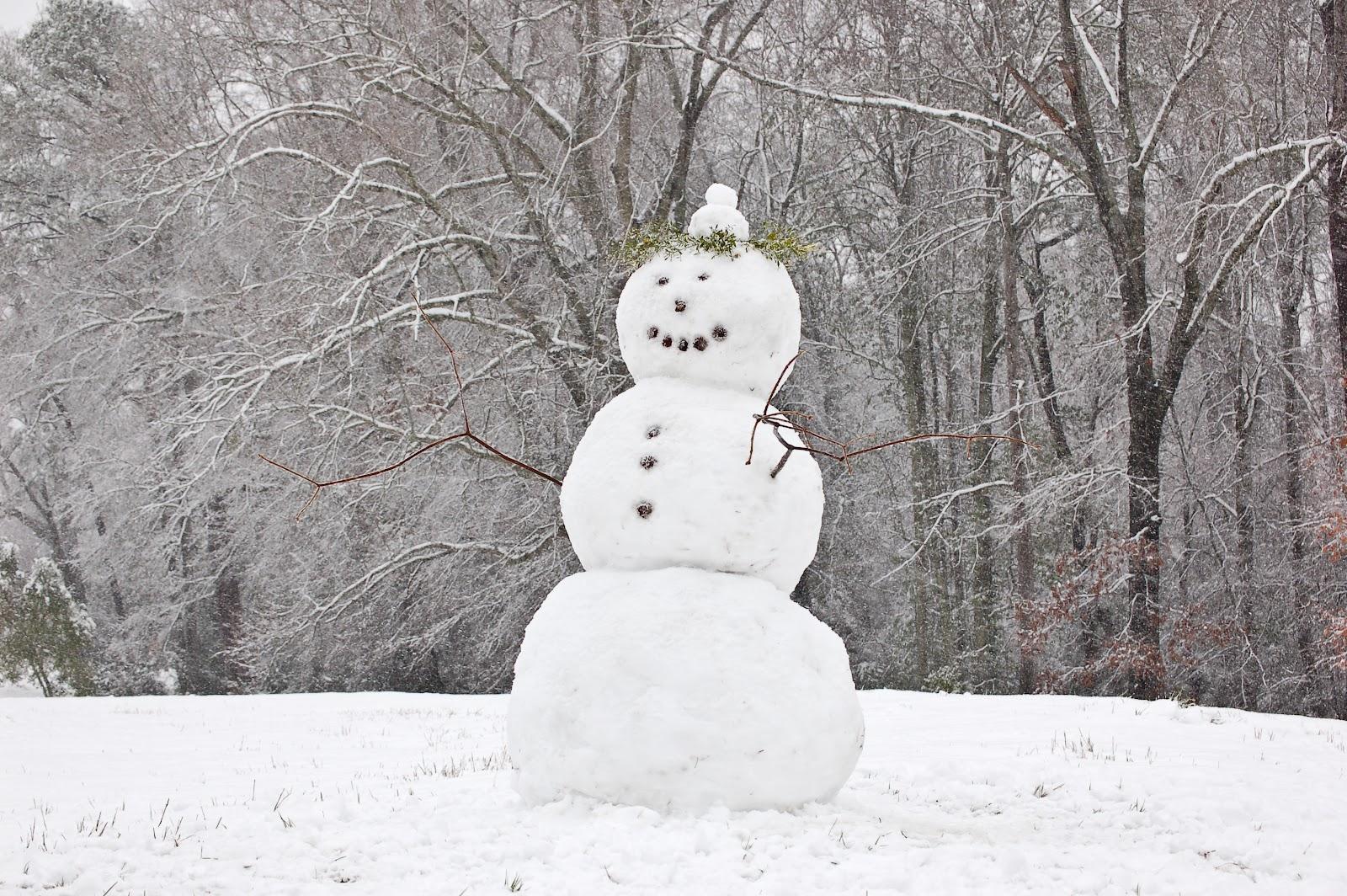 File:Auburn Alabama Snowman