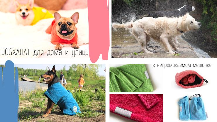 Подробнее https://www.dogsoap.ru/doghalat  СКИДКА10% от указанной цены на dogхалаты в наличии  S обхват груди 50 см 1600р M обхват груди 60 см 1900р L обхват груди 75 см 2200р Совет: если у вашей собаки промежуточное значение, то выбирайте размер больше  синий цвет  желтый цвет салатовый цвет голубой цвет белый цвет серый цвет ярко-розовый (magenta) цвет