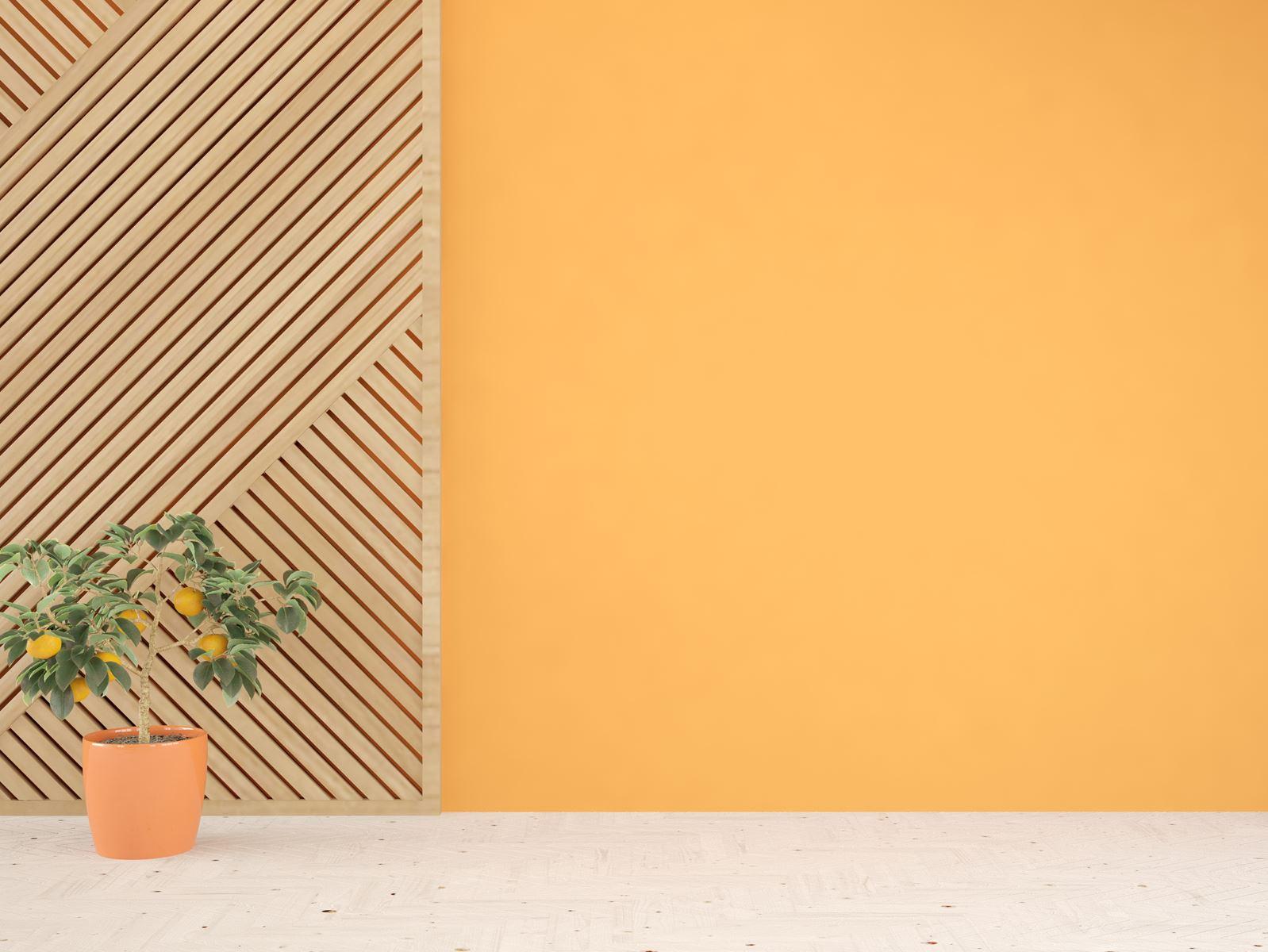 Hãy thử dùng sơn màu cam cho những bức tường phòng khách, bạn sẽ cảm nhận được những điều thú vị