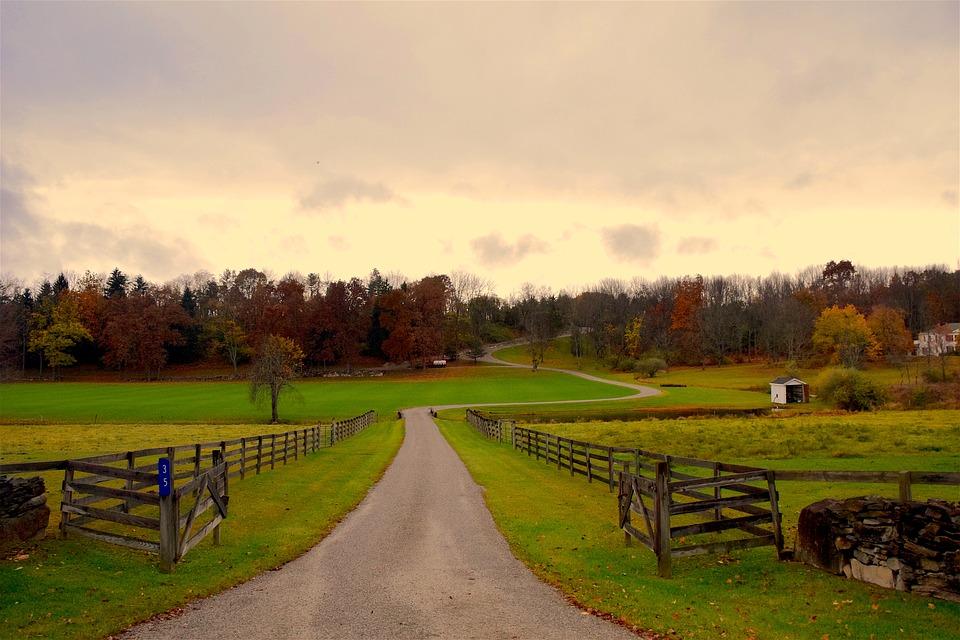 Image result for rural