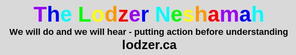 lodzer_weWillDo_w600.jpg