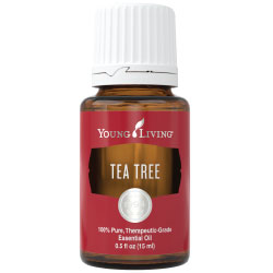 Image result for young living tea tree essential oil