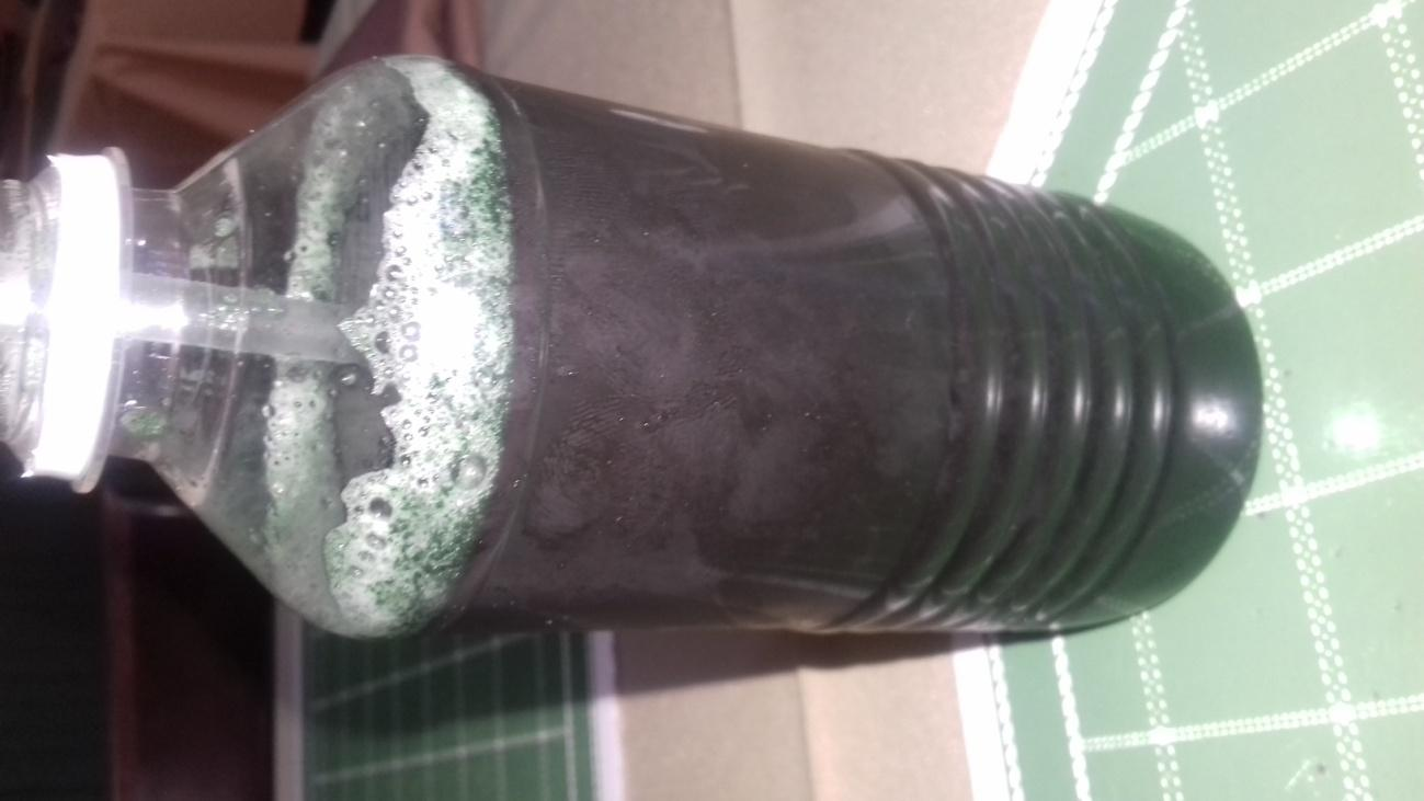 C:\Users\Lopez\Desktop\spirulina and cane.jpg