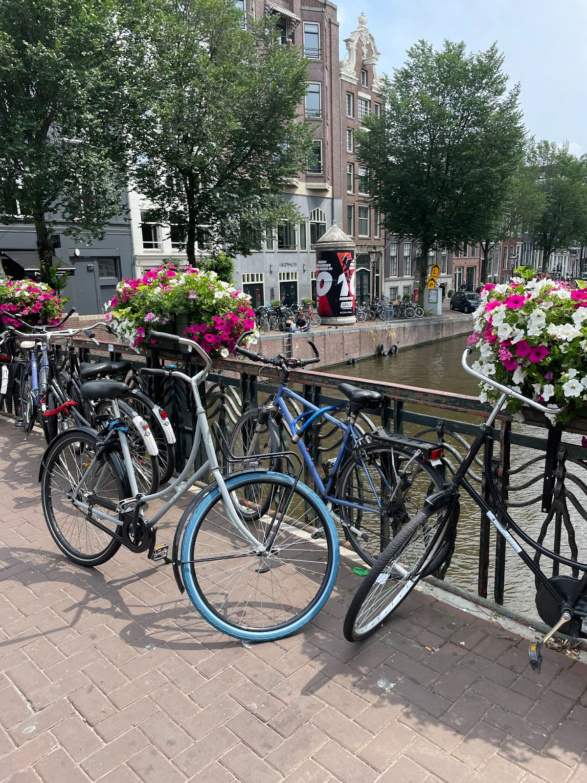 Bicycles line the streets of Amsterdam