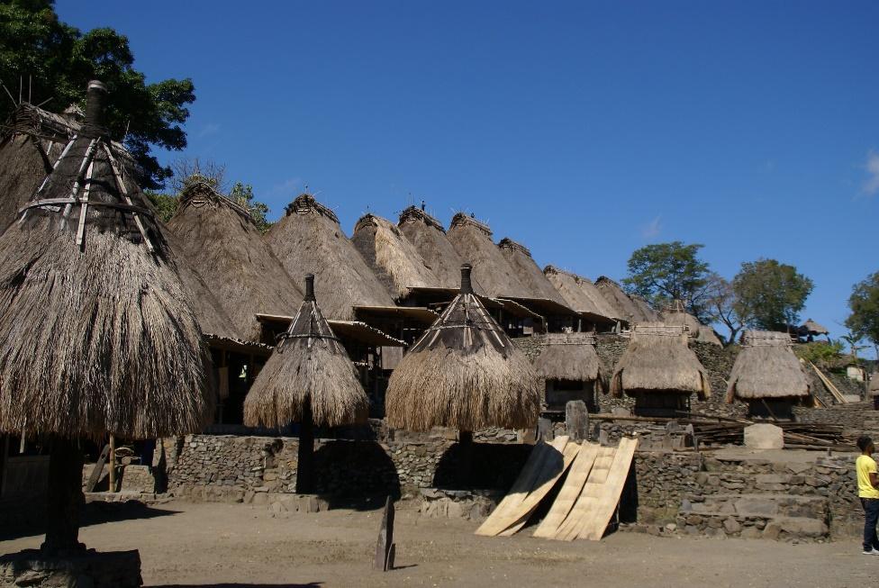 Traditional Village in Bajawa Flores