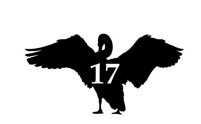 blackswan17.jpg