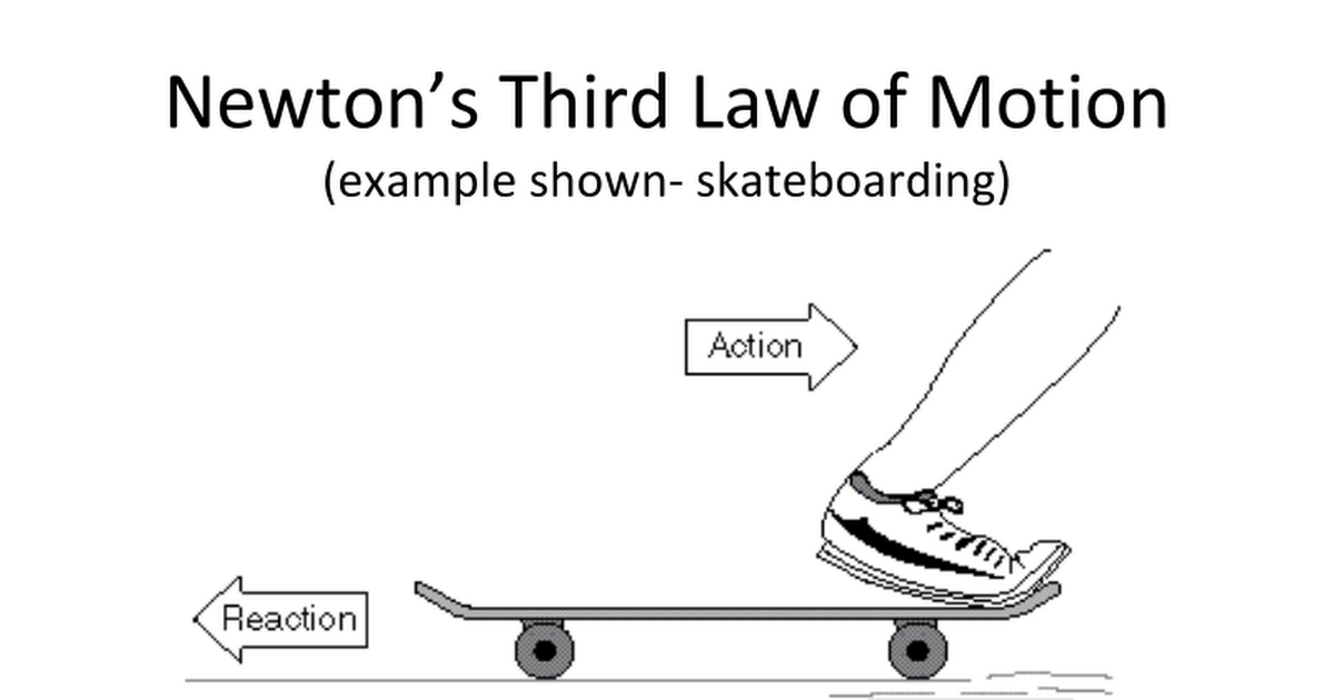 Newton S Third Law Law Kids Definition