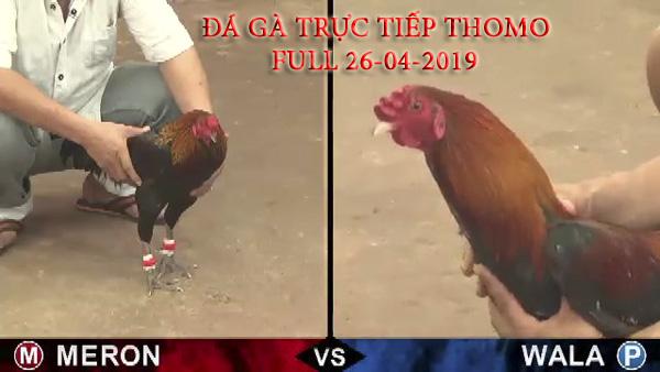 da-ga-truc-tiep-999-05262020