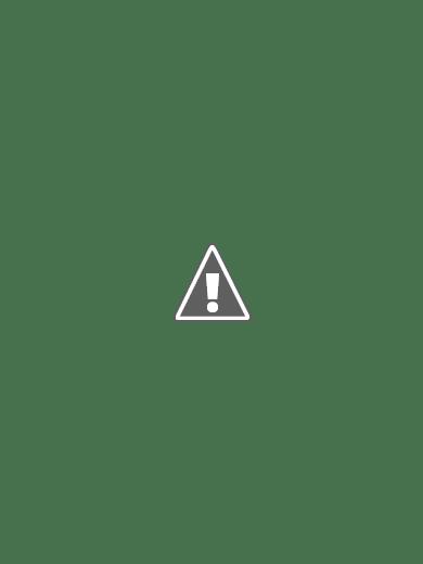 luminaria-em-pvc-flor-concha