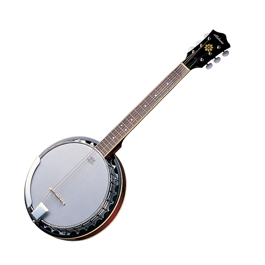 alat musik petik selain gitar