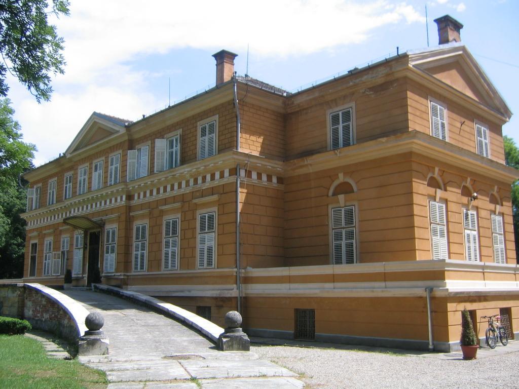 http://upload.wikimedia.org/wikipedia/commons/3/33/Castelul_Regal_de_la_Savarsin4.jpg