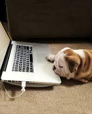 cyber day!.jpg
