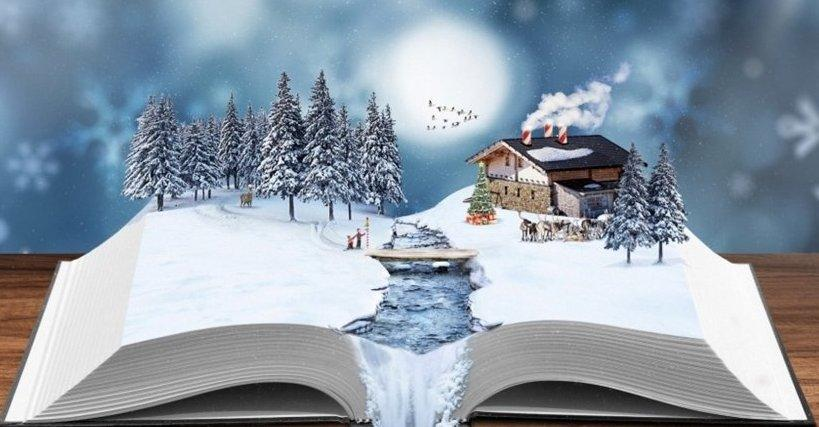C:\Documents and Settings\Библиотека\Рабочий стол\Турнир 08.01.20202\books winter.jpg