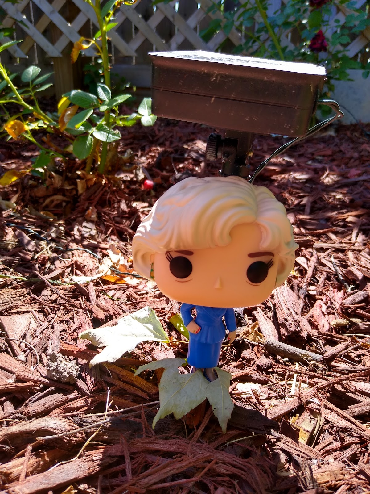 rose nylund funko pop picture