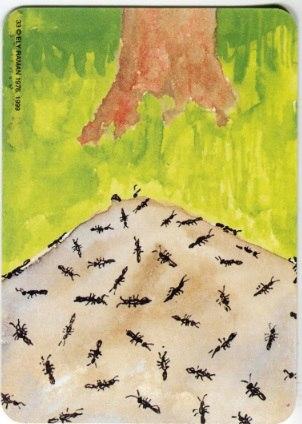 Карта из колоды метафорических карт Ох: муравейник