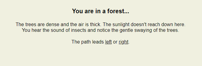 you are in a forest