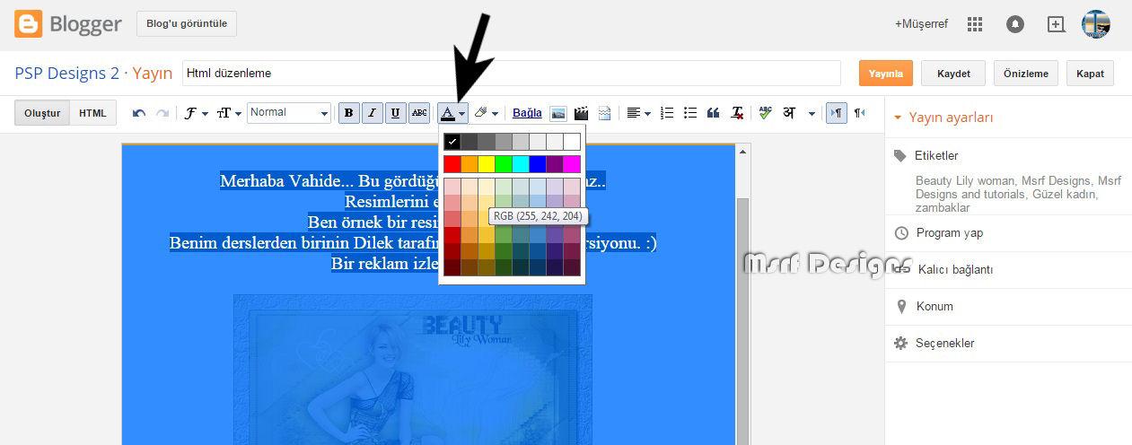 yazı rengi.jpg