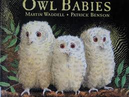 Image result for three owl babies