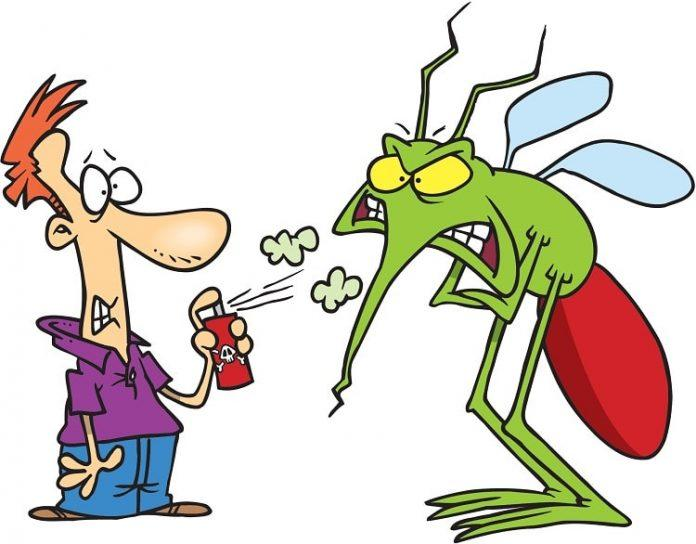 Mách bạn dịch vụ diệt côn trùng giá rẻ cho mọi nhà