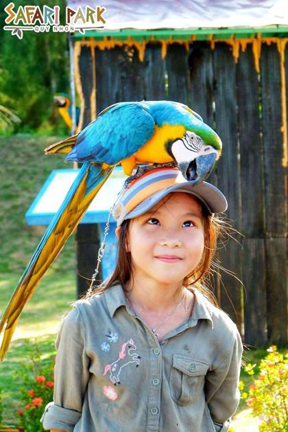 Chơi cùng động vật tại FLC Zoo Safari Park Quy Nhơn