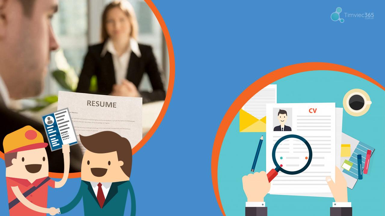 CV online timviec365.com.vn