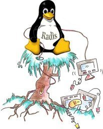 Logo progetto Radis