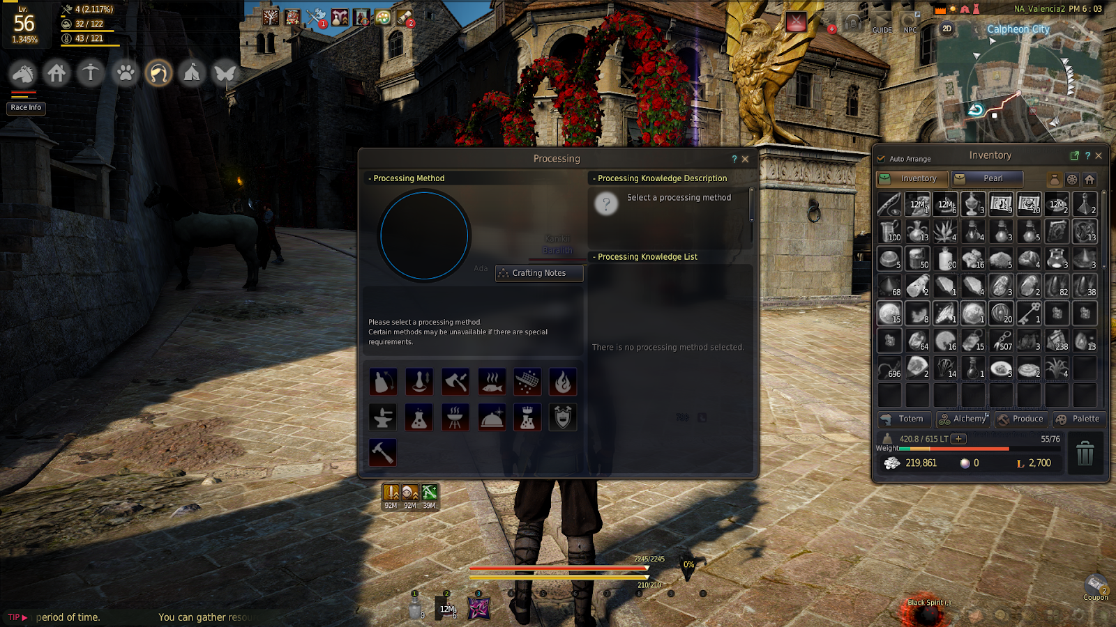 Black Desert Online: Crafting Full Guide for Beginners