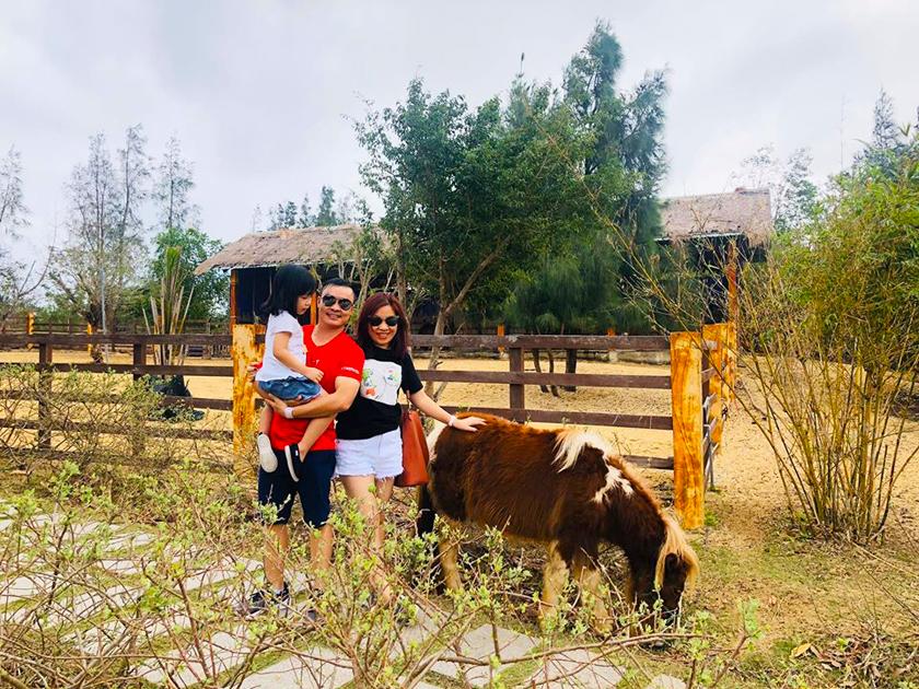 Tham quan động vật tại FLC Zoo Safari Park Quy Nhơn