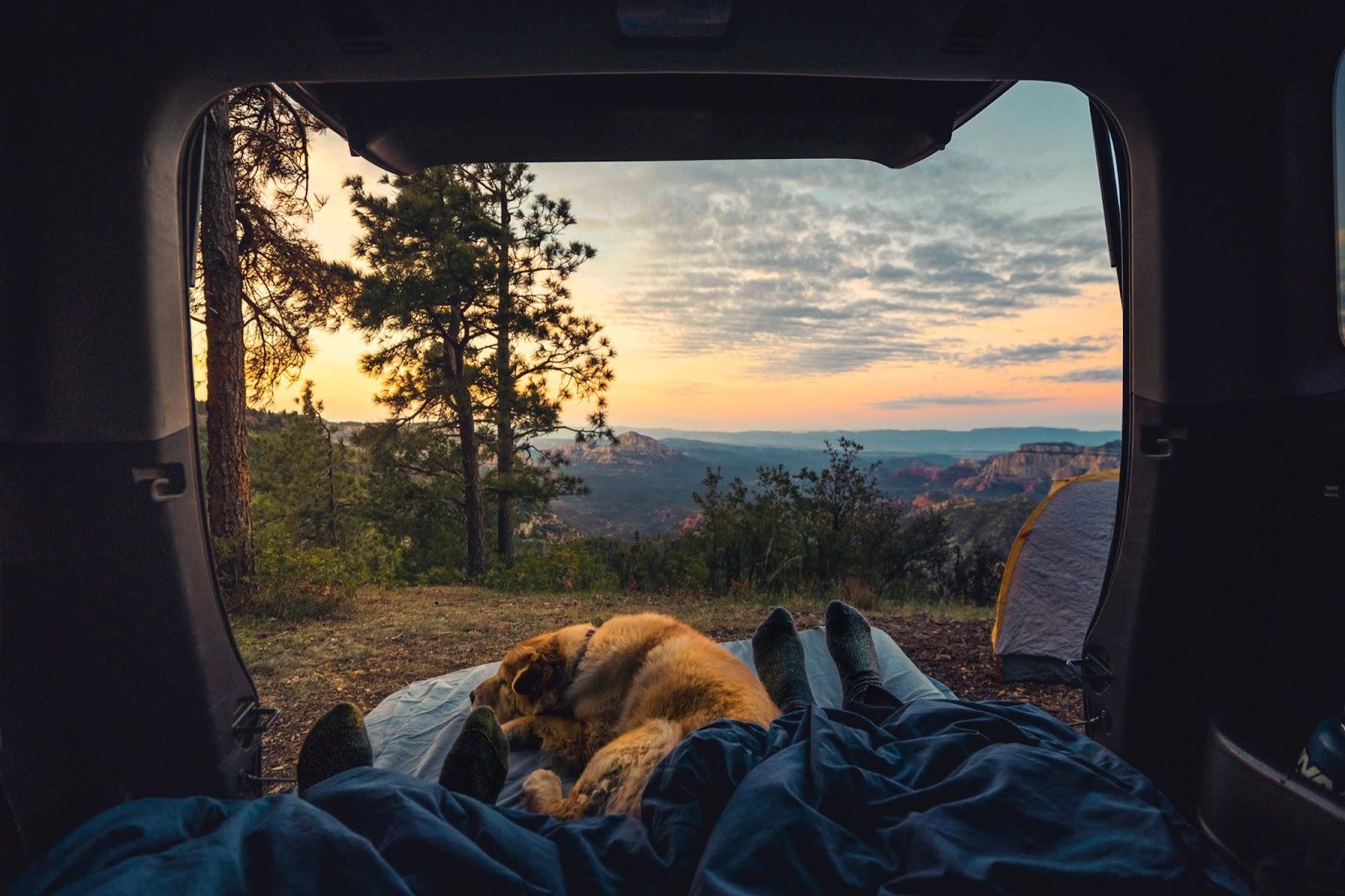camping newly-wed activity