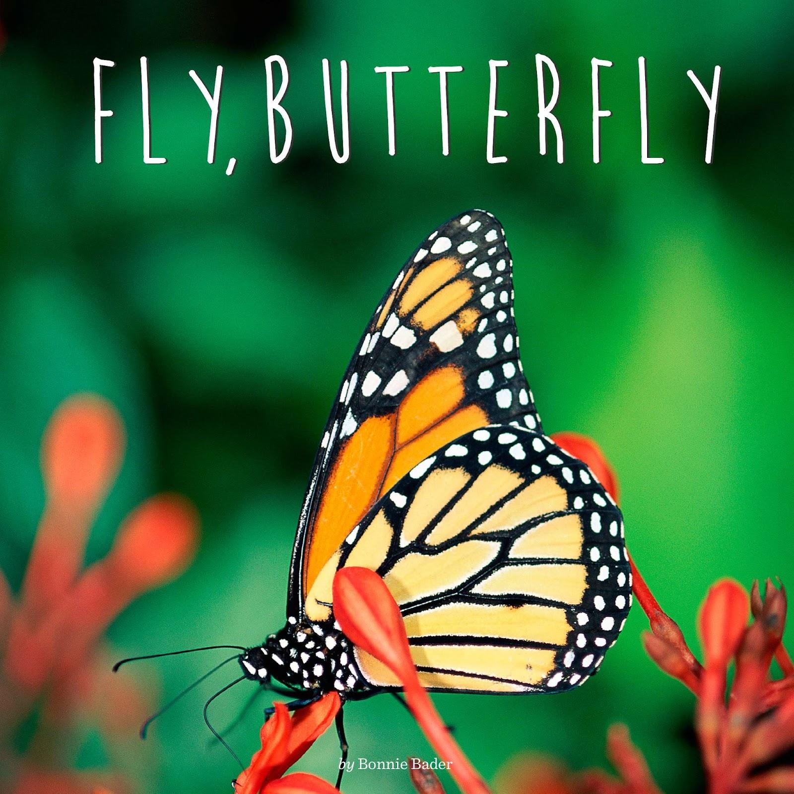 9780448479194_Fly,_Butterfly.jpg