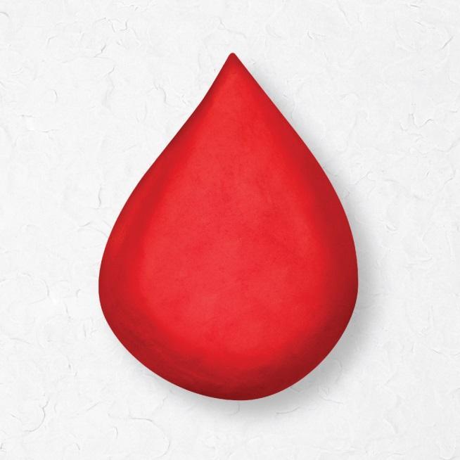 3. กลัวเลือด