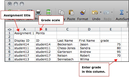 the spreadsheet includes the assignment title and grade scale as well as each students name and id enter the appropriate grade for each student in the