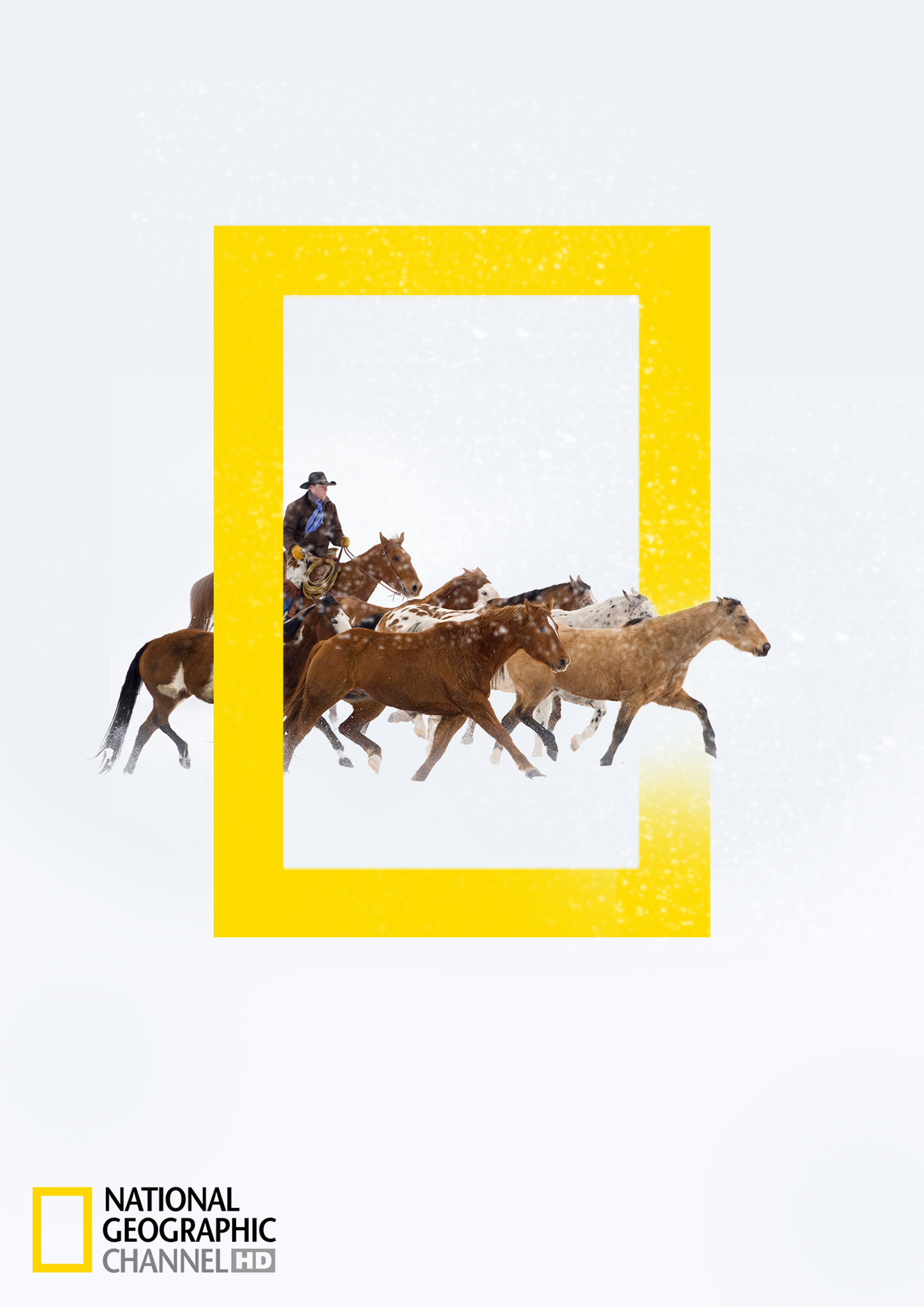 National Geographic Print Advert By ACC Grannot: National Geographic HD  Channel winter programs - Horses | Ads of the World™