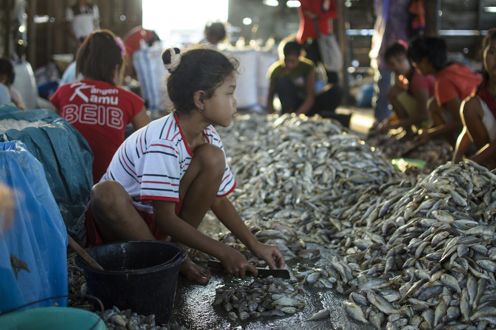 Child labor: child from a low income family working