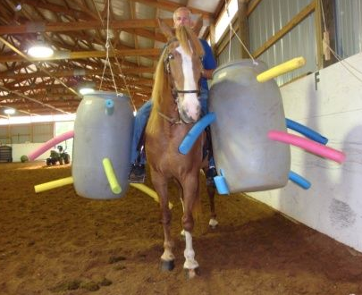 6 pool noodle obstacles horse nation for Where can i go horseback riding near me
