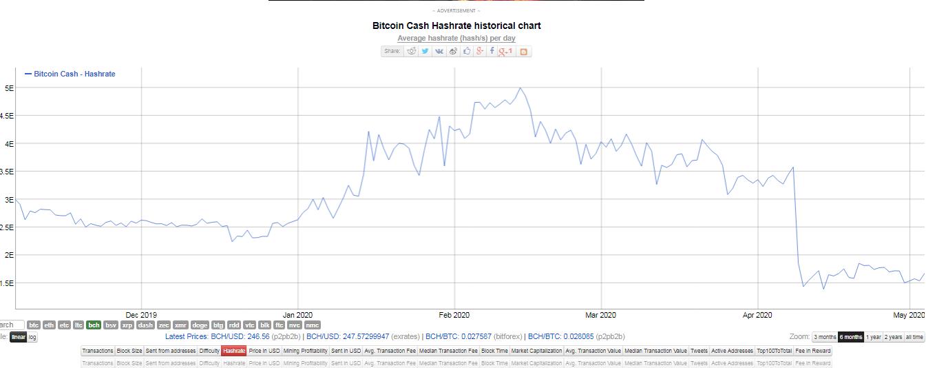 Hash rate de Bitcoin Cash. Fuente: Bitinfocharts.