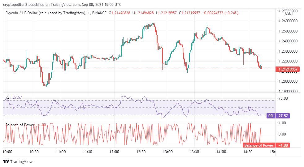 Skycoin price analysis