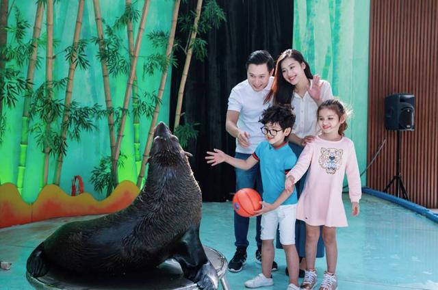 Xiếc hải cẩu và xiếc thú tại Rạp xiếc Safari