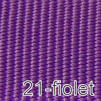 21-FIOLET
