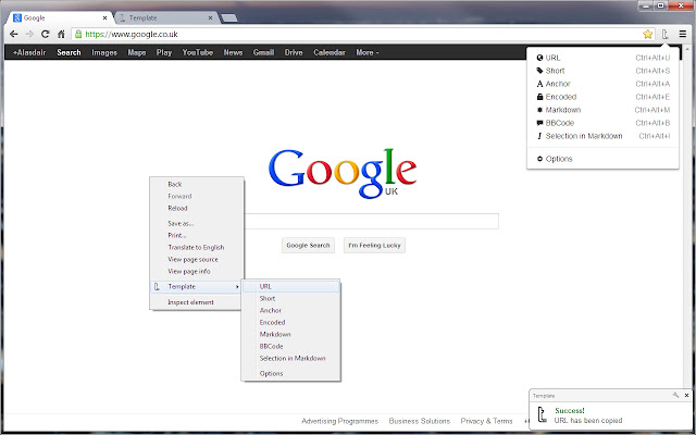 template chrome web store