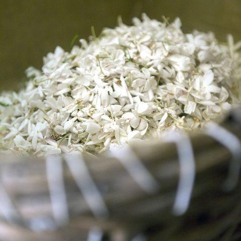 ความพิเศษของดอกมะลิใน Gabrielle Essence - CHANEL 06