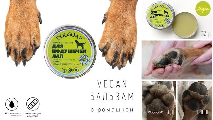 Оздоравливает подушечки лап | ORGANIC | VEGAN  Питает, увлажняет, заживляет подушечки лап и сухие локти собак  Безопасно при слизывании. Наносится на чистые лапки  Vegan бальзам в СТИКЕ  (15ml)    Vegan бальзам в баночке с косточкой  (30гр)   760р  Подробнее на нашем сайте  https://www.dogsoap.ru/paw-balm  Выбери количество: