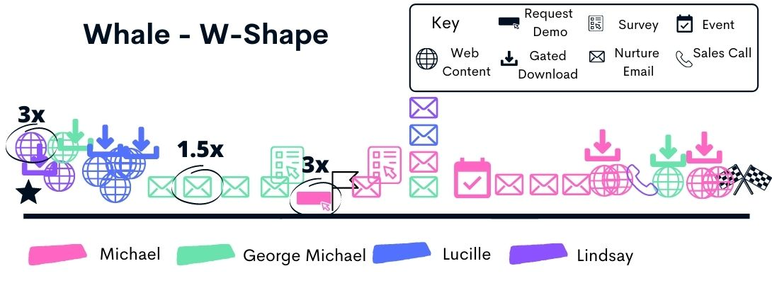 whale w shape attribution